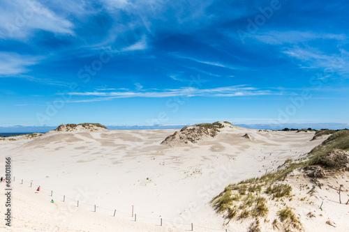 Moving dunes park near Baltic Sea in Leba, Poland - 68801866