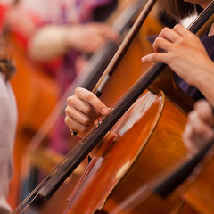 Hands girl playing cello