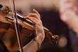 Leinwanddruck Bild - Hand of a woman playing the violin