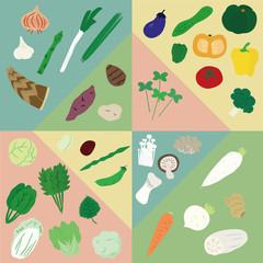 vegetable 野菜 分類
