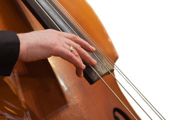 Human hand on the strings contrabass