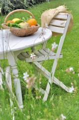 panier de légumes sur une table dans jardin