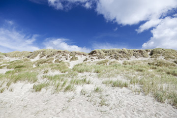 Sand dunes and blue sky. Denmark West Coast.