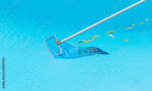 Cleaning swimming pool of fall leaves - 68807020
