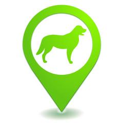 chien sur symbole localisation vert