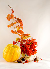 Autumn still life with pumpkin and viburnum