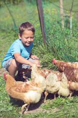 Kleiner Junge beim spielen mit Hühnern