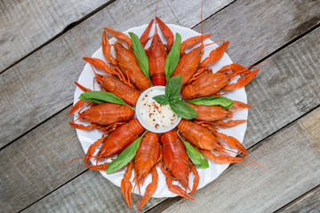 Plate with red boiled crayfish and herbs