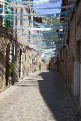 Typical street in Valldemossa village, Mallorca island, Spain