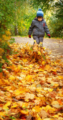 child walking on the autumn leaves