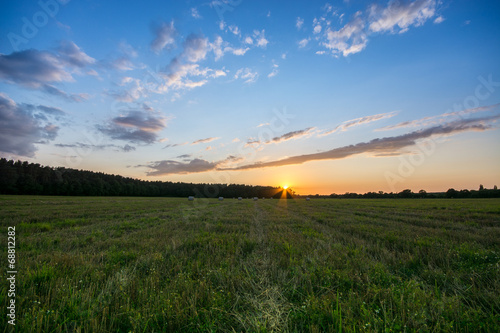 canvas print picture Sommerfeld