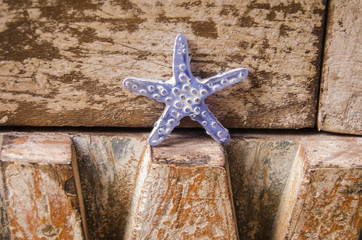 summer treasures: starfish