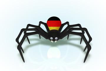 Wolfgang, German Flag Spider
