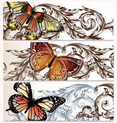 Vector backgrounds set with butterflies