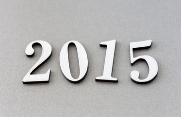 2015年 新年