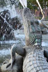 Krokodil Springbrunnen