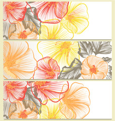 Vector backgrounds set with floral design