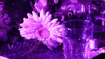 glasses and flowers are on the table