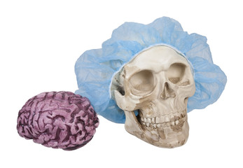 Skull with Hair Net with Brains Nearby