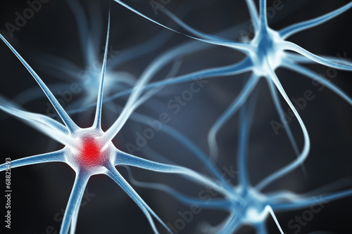 canvas print picture Neurons in the brain