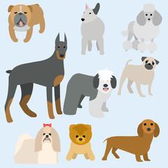 Flat modern design dogs