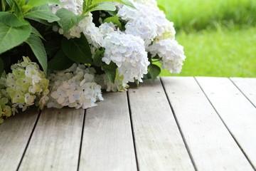hortensie auf terrasse