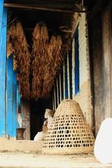 Wicker basket under corn cobs. Landruk-Nepal. 0573