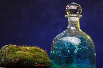 Still-life with old bottle and moss. Ecology Concept
