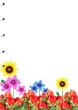 notebook on flower texture