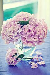 Pink hydrangea flowers in a vase .