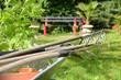 Garten 257