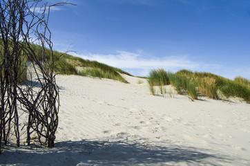 Dünenlandschaft auf Juist Ostfriesische Inseln
