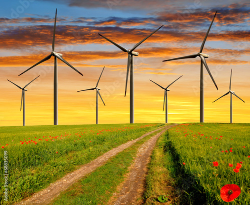 Plakat Dirt road in the wheat fields with wind turbines in the sunset
