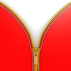 Isolated red zipper