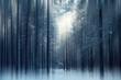 Leinwandbild Motiv magical winter forest, a fairy tale, mystery