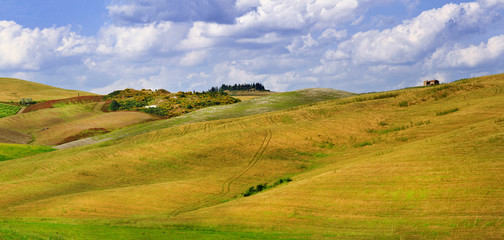 pictorial Tuscana landscapes. golden hills of Orcia. panorama