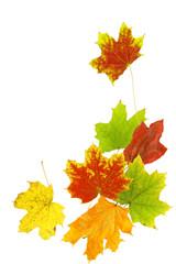 Herbst 21
