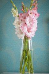 beautiful gladiolus bouquet
