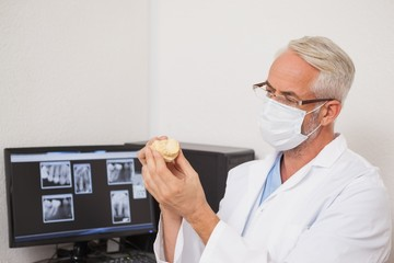Dentist wearing surgical mask holding tooth model