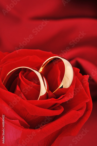 canvas print picture Zwei Ringe mit Rose