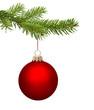Rote Weihnachtskugel am Zweig