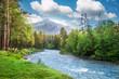 Leinwanddruck Bild - mountains forest