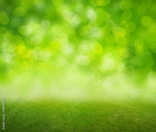canvas print picture grass background