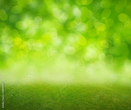 grass background - 68841841