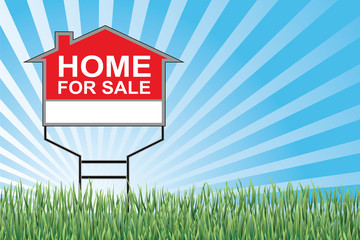 Home For Sale Sign In Grass