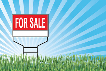 For Sale Sign In Grass