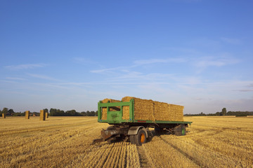 harvest time trailer