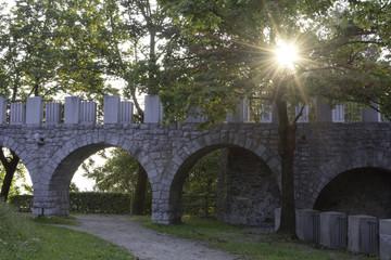Sunrise in the castle garden