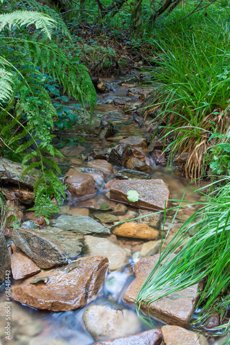 canvas print picture Waldbach