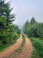 утренний туман в российской деревне